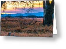 Setting Sun At Rocky Mountain Arsenal Greeting Card by Tom Potter