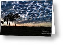 Dawn Silhouettes Greeting Card