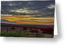 Dawns Early Light 1 Greeting Card