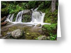Day 1000 - Lower Forest Glen Falls Greeting Card