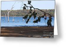 Day At The Lake Greeting Card