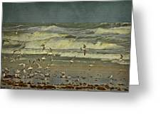 Day For The Birds Greeting Card