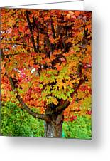 Day Glo Autumn Greeting Card