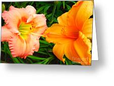 Day Lilies As Happy Friends Greeting Card