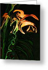 Day Lily At Night Greeting Card
