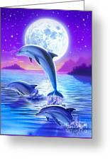 Day Of The Dolphin Greeting Card