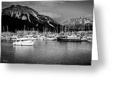 Day On The Water Greeting Card