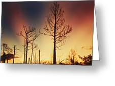 Daybreak After Hurricane Andrew Greeting Card