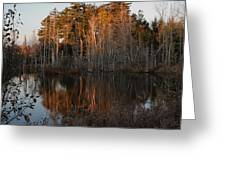 Daybreak At The Pond Greeting Card