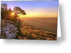 Daybreak On Mt. Magazine - Arkansas - Cedar Tree - Autumn Greeting Card