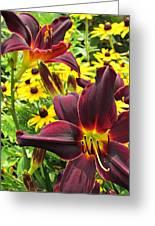 Daylilies And Rudbeckia Greeting Card