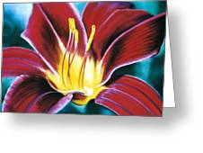 Daylilly Georgia Style Greeting Card