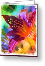 Daylily Delight Greeting Card