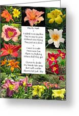 Daylily Math Greeting Card