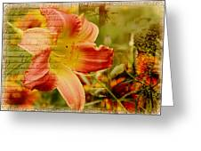 Daylily Memories Greeting Card