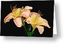 Daylily Pair Greeting Card