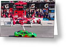 Daytona Speedway Race View Greeting Card