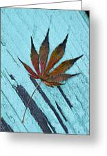 Dazzling Japanese Maple Leaf Greeting Card