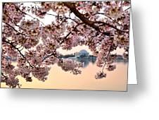 Dc In Bloom IIi Greeting Card
