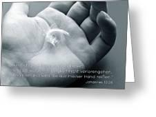 De John 10 28 Greeting Card
