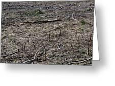 Dead Earth Greeting Card