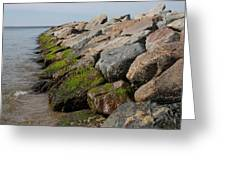 Dead Neck Jetty Greeting Card