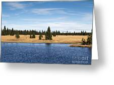 Dead Pond Greeting Card