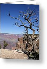 Dead Tree At The View Point Greeting Card