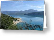 Dead Tree  Blue Ocean Greeting Card