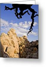 Dead Tree Limb Hanging Over Rocky Landscape In The Mojave Desert Greeting Card