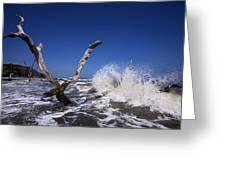 Dead Tree Splash Greeting Card