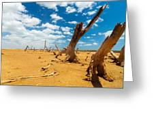Dead Trees In A Desert Wasteland Greeting Card