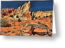 Dead Trees In A Rainbow Desert Greeting Card