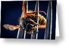 Dead Wasp On A Fork Greeting Card