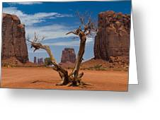 Dead Wood In Monument Valley Greeting Card