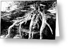 Deadtree Greeting Card