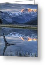 Deadwood At Beauty Creek Sunrise Greeting Card