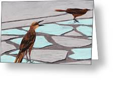 Death Valley Birds Greeting Card
