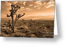 Death Valley Solitude Greeting Card