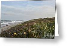 December Beach Day Greeting Card