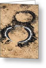 Decomposing Tires Greeting Card