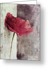 Decor Poppy Greeting Card by Priska Wettstein