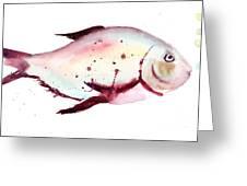 Decorative Fish Greeting Card