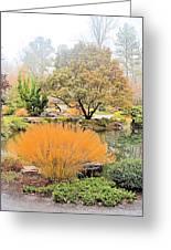 Decorative Pond Greeting Card