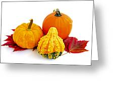 Decorative Pumpkins Greeting Card