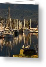 Deep Bay Greeting Card by Randy Hall