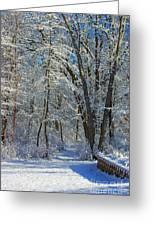 Deep Freeze Greeting Card