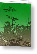 Deep Green Haiku Greeting Card