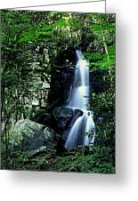 Deep In The Mountains Greeting Card