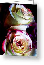 Deep Pink Greeting Card by Will Boutin Photos